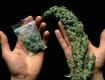 Поліція Закарпаття затримала юнака, котрий отримав поштою два пакунки з марихуаною