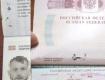 В Закарпатье на границе поймали ловкача из России с украинским паспортом