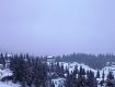 В Закарпатье начала царствовать настоящая зима