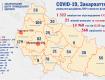 В Закарпатье умер 31 человек с подтвержденным диагнозом COVID-19