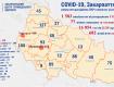 Почти полтысячи больных коронавирусом в Ужгороде: Статистика по Закарпатью на 13 июня