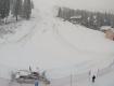 В Закарпатье пришла зима?: В Карпатах в новогоднюю ночь выпал долгожданный снег