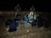 На границе с Венгрией, в Закарпатье задержали 10 нелегалов и их проводников