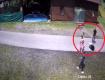 Журналисты заполучили видео, которое зафиксировало как взрослый урод с кулака бьет маленькую девочку на курорте в Закарпатье