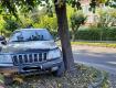 В Ужгороде гуру парковки блеснул умом возле здания суда