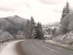 Метель, морозы и дожди: В Закарпатье объявлено штормовое предупреждение