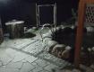 Отказались уходить - получили!: В Закарпатье владелец кафе напал на троих клиентов