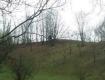 В лесах Закарпатья странное существо пугает людей: фото опубликовали в сети