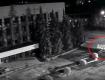 В сети показали проявление вандализма в Ужгороде