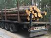 Иршавская полиция обнаружила полуприцеп с левой древесиной