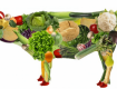 Що буде, якщо відмовитись від м`яса та перейти на вегетаріанство