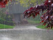 На реках Закарпатья ожидается подъем уровня воды
