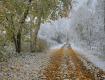 Первый снег: Поверья закарпатцев