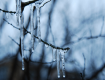 Морозы в Украине долго не продержатся