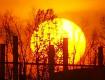 В середине декабря будет чрезвычайно большая солнечная активность