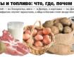 Цена продуктов и величина зарплат по регионам Украины