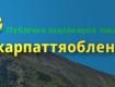 Приватизацию Закарпатьеоблэнерго начал еще Кабинет Министров Николая Азарова
