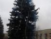 Новогодняя елка стоит на центральной площади в Великом Березном