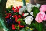 Триденне свято бабиного літа влаштували у столиці Закарпаття