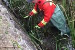 """В Закарпатье спасатели сделали то, на что не хватило смелости у """"заботливых"""" местных жителей"""