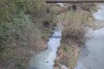 В Ужгороде от реки разит настолько сильно, что никакая маска не спасет!