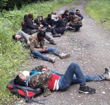 """Півтора десятка нелегалів потрапили до Євросоюзу, легко """"обійшовши"""" прикордонників Закарпаття"""
