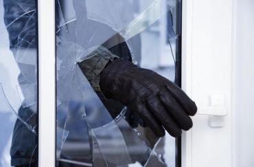 В Закарпатье полиция раскрыла наглую кражу