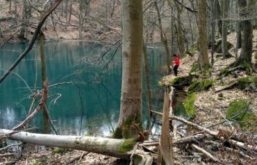 Настоящее чудо природы недалеко от Ужгорода