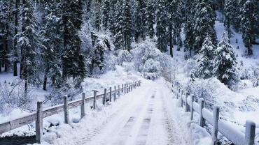 Синоптики попереджають закарпатців про сильний сніг