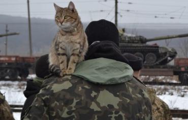 Як зустрічали закарпатських військових в ужгородських ДоманинцяхДоманинці