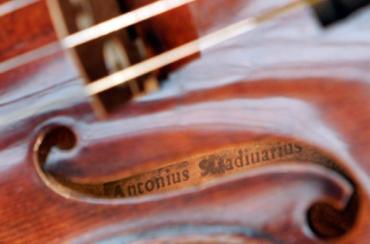 На Закарпатті є деревина, з якої виготовляли унікальні скрипки «Страдіварі»