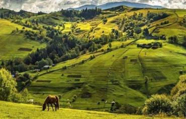 Закарпаття - найбільш екологічно здоровий регіон в Україні