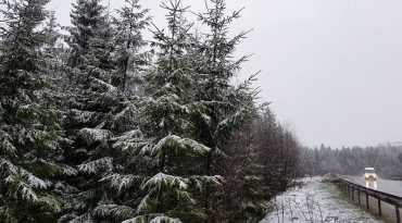 Якою буде сьогодні, 17 березня, погода на Закарпатті?