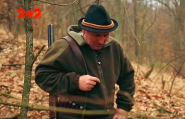 Мисливці Закарпаття полюють на невідомого хижака, який ховається у лісах