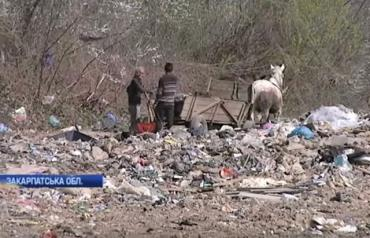 Закарпаття. Мешканці села на Тячівщині залишилися без питної води