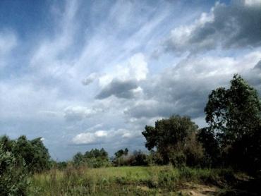 Прогноз на літо: два місяці дощів і один посухи