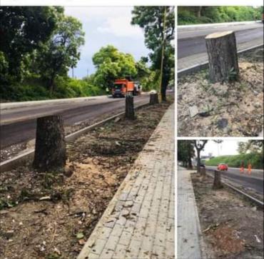 Уничтожение Ужгорода: Мерзкого мэра вывели на чистую воду