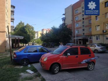 Очевидцев варварского поступка разыскивают сейчас в Ужгороде