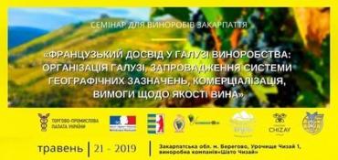 """У Берегово відбудеться """"французький"""" семінар для виноробів Закарпаття"""