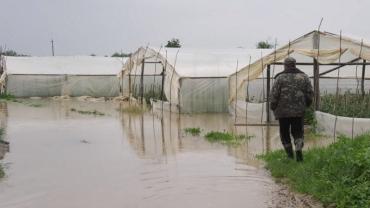 Через повінь Закарпаття втратило врожаї тепличних овочів та ягід