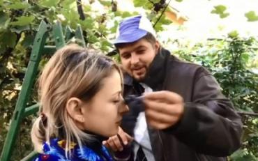 Як збирають виноград на теренах Закарпаття