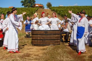 У Берегово відкриють Музей виноградарства і виноробства Закарпаття