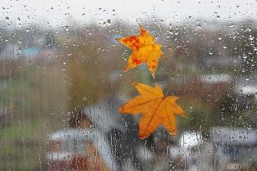 Прогноз погоди в Закарпатті на вівторок, 12 листопада