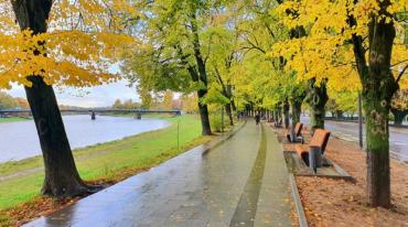 Прогноз погоди в Закарпатті на п'ятницю, 15 листопада