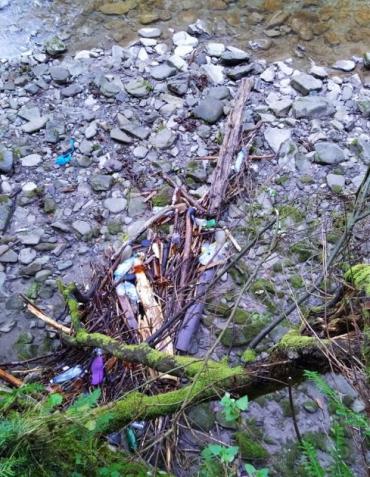 Купи сміття не додають туристичної привабливості регіону Закарпаття