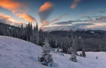 Прогноз погоди в Закарпатті на п'ятницю, 6 грудня