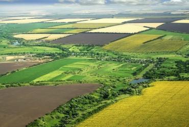 Господарський суд Закарпаття зобов'язав фермера звільнити 753 га земель на Берегівщині