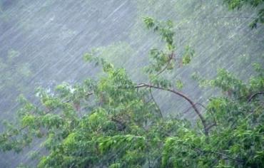 В Закарпатье возвращаются дожди - возможны подтопления городов и сел