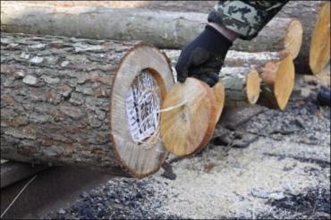 На Закарпатье пограничники нашли очередную партию табака на 2 миллиона гривен (ФОТО)
