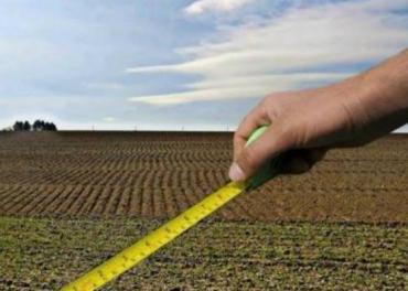 Закарпатський радгосп передав фермеру свої землі незаконно!